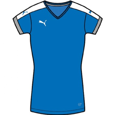 Puma Pitch Frauen Trikotsets