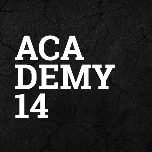 komplette Nike Academy 14 Teamlinie