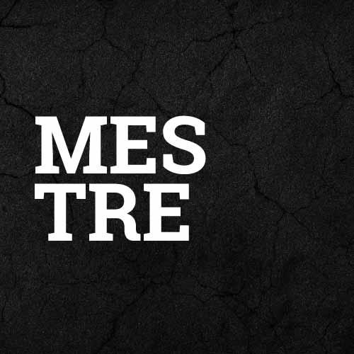 komplette Puma Mestre Teamlinie