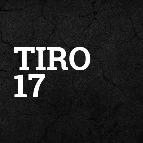 komplette Adidas Tiro 17 Teamlinie